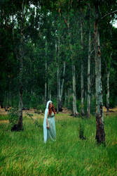 spirit of the forest by Kaya-Nurel