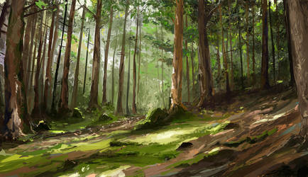 Pine forest - study by MittMac
