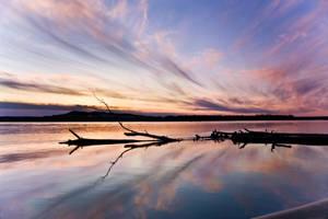 Riverside Reflection by MarshallLipp