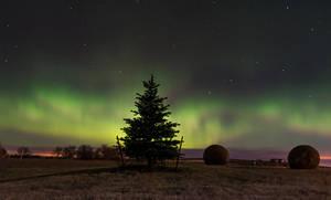 First Northern Lights by MarshallLipp
