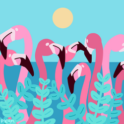 Flamingoes by pk4n