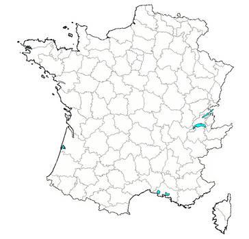 Carte Administrative Nouvelle Departementalisation by Tekfonix
