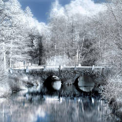 Infrared bridge by WrappedUpInBooks