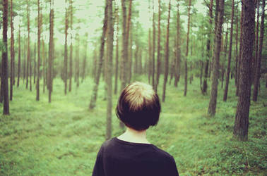 Skog by WrappedUpInBooks