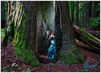 stacia redwoods by ritzcrackaa