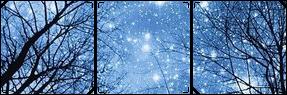 Starry Night Divider [F2U] by grovestep