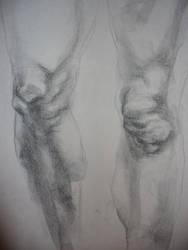UCD Summer 2007: Knees Study by amandapampena