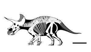 Raymond the Triceratops by GetAwayTrike