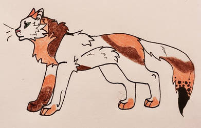 Mapledusk by Lupin-wolf