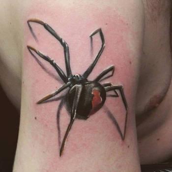 spider by keloj