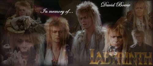 In Memory of David Bowie by Lady1Venus