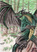 Forest Dragon.. by Caedus6685