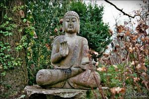 Buddharupa by RoqqR