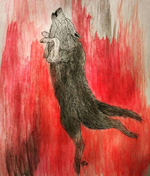 The Wolf Dance by WolfWhisperer19