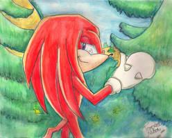 Knuckles :D by TempestMoonXx