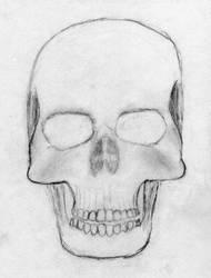 Skull by CDJam