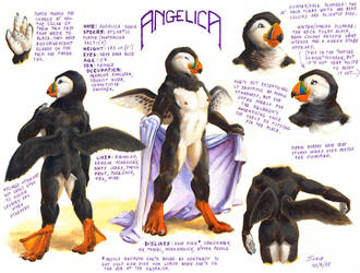 Angelica ref sheet by Alessio-Scalerandi