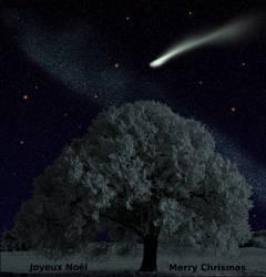 Joyeux Noel - Merry Christmas by tsahel