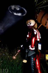 Harley with batman signal by UndyingMagic