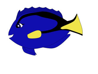 Bernice as a Blue Tang fish by heart8822