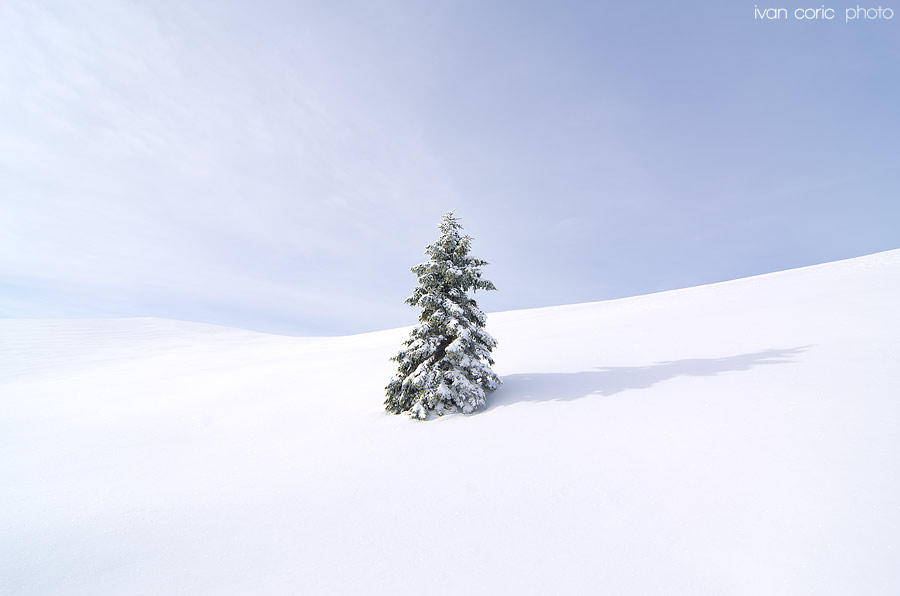 All alone in the snow by ivancoric