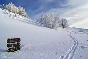 Path to Vaganski by ivancoric