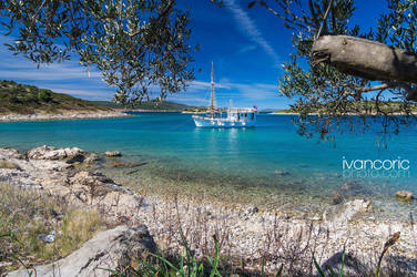 On the special island by ivancoric