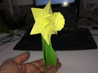 237 Daffodil Day by neubauten