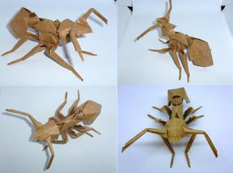 271 Satoshi Kamiya Ant by neubauten