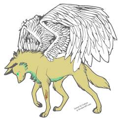 winged wolf adopt :open: by dragonblood925