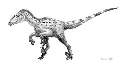 Deinonychus antirrhopus by Osmatar
