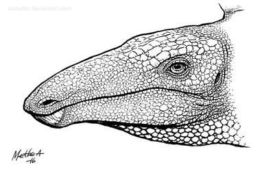 Somewhat Speculative Stegosaurus by Osmatar