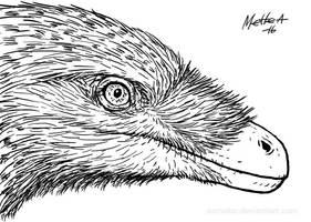 Velociraptor portrait by Osmatar