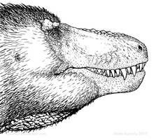 The lipless rex experiment by Osmatar