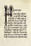 Book of Armagh insular's calligraphy by Errance