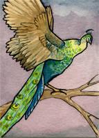 Green Peacock by feynico