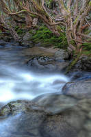 HDR_Thredbo_Creek4 by RichardjJones