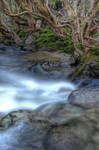 HDR_Thredbo_Creek4 by RichardjJones