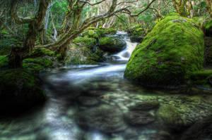 HDR_Thredbo_Creek7 by RichardjJones