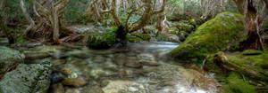 HDR_Thredbo_Creek8-pano by RichardjJones