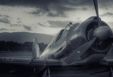 WW2 fighter aircraft by RichardjJones