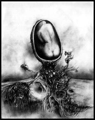 Genesis by FeralFungus