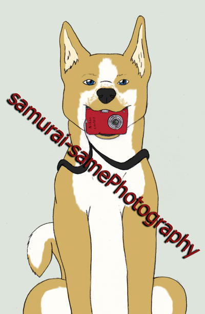 SRS-Photography's Profile Picture