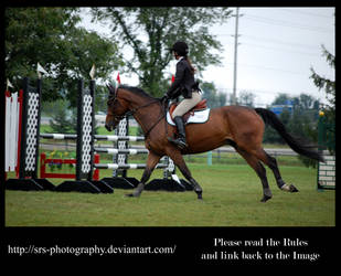 - Show Jumping 16 - :Stock: by SRS-Photography