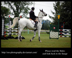 - Show Jumping 15 - :Stock: by SRS-Photography