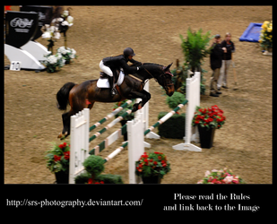 - Show Jumping 11 - :Stock: by SRS-Photography