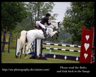 - Show Jumping 9 - :Stock: by SRS-Photography