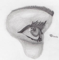 Female Eye by Lukis24