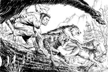 Wolverine by kimdemulder