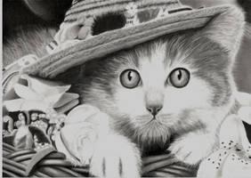 Kitty by Miniart89